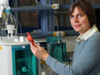 Die Kaiserslauterer Professorin Heidrun Steinmetz koordiniert das Projekt / Foto: Koziel/TUK CopyrightTU Technische Universität Kaiserslautern