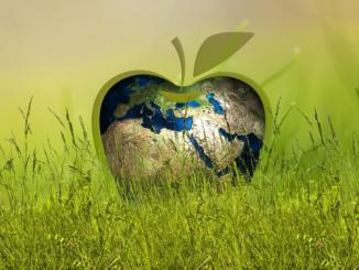 Ein BHKW kann in der Landwirtschaft viel Energie sparen. Nachhaltigkeit ist gewährleistet, da Gülle und andere Abfälle als Brennstoffe genutzt werden können. Die Brennstoffe werden zu mehr als 90 Prozent ausgenutzt. Fossile Brennstoffe müssen nicht verwendet werden. Der Energiebedarf für die Heizung von Ställen und den Betrieb von Futterautomaten kann mit einem solchen Kraftwerk gedeckt werden.