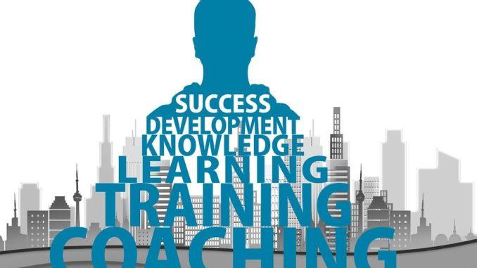 Der Business Coach begleitet bzw. fördert Mitarbeiter bei der Karriereplanung und unterstützt Unternehmen bei der gezielten Personalentwicklung.