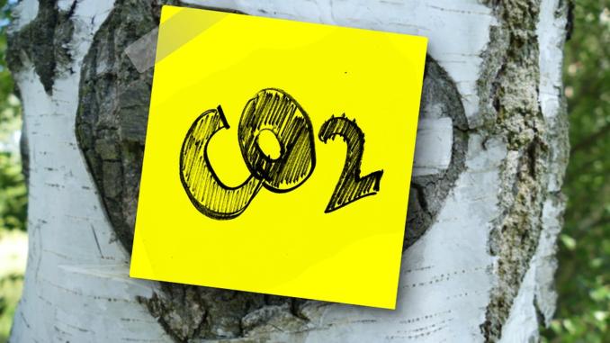 Der verstärkte Einsatz des Energieträgers Erdgas in der Energiewirtschaft, der Industrie und den Haushalten führte im Jahr 2016 zu einem 2,5 Mio. Tonnen höheren Kohlendioxid-Ausstoß dieses Energieträgers im Vergleich zu 2015.