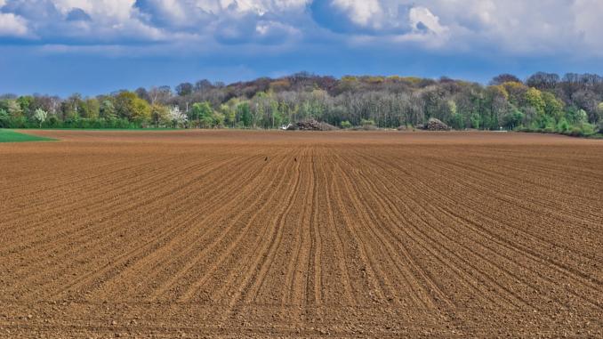 Insbesondere bei Transportmitteln, die im Bereich der Land- und Forstwirtschaft Ihren Einsatz finden, sind große und breite Räder ein Faktum. Sie bilden die Verhältnisse ab, die man vor Ort vorfindet.
