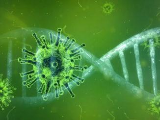 Coronavirus: Regionale Wirtschaft rüstet sich gegen Auswirkungen