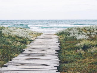Lies: Millionenpaket für den Küstenschutz