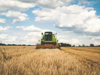 Nachwachsende Rohstoffe aus vernässten Mooren - eine Chance für den niedersächsischen Moor- und Klimaschutz?