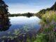 Gemeinsam für die Ökologie der Ems - NLWKN und WSV unterzeichnen Kooperationsvereinbarung