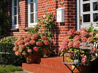 Eignen sich Holz, Kunststoff oder besser Aluminium für die Haustür?