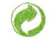 Recycling für Unternehmen: Praktisch, umweltfreundlich und profitabel
