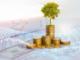 Wie wird eine Aktiengesellschaft nachhaltig?