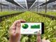 Erste Ergebnisse der Landwirtschaftszählung 2020 für Niedersachsen