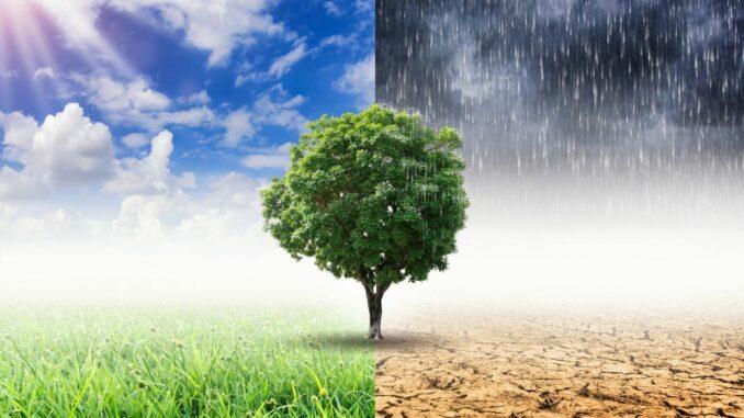 Erster Bremer Online Schüler-Klimagipfel
