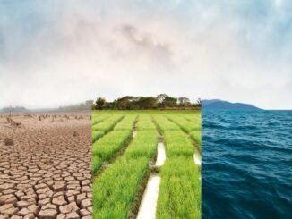 Maritime Wirtschaft im Zeichen von Corona-Krise und Klimawandel