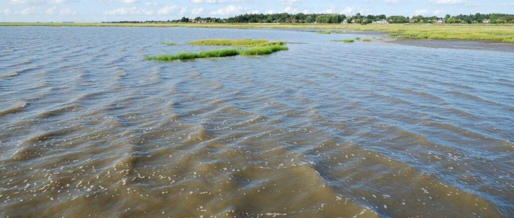 "Lies: ""Biosphärenreservat Wattenmeer gewinnt an Kontur"""