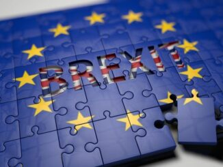 6 Monate Brexit: Unternehmen klagen über Zollbürokratie und hohe Frachtraten