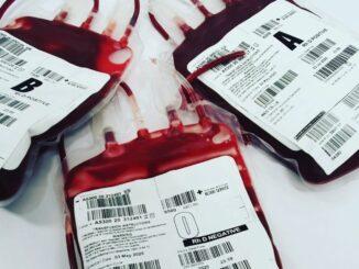 Handwerkskammer und DRK-Blutspendedienst laden am 3. August zur zweiten gemeinsamen Blutspende ein.