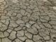 """Weltklimarat legt neuen Bericht vor - Lies: """"Müssen unsere aktive Klimapolitik in Niedersachsen konsequent weiter vorantreiben"""""""