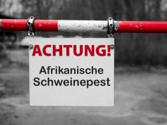 """Ministerin Barbara Otte-Kinast: """"Afrikanische Schweinepest unbedingt verhindern"""""""