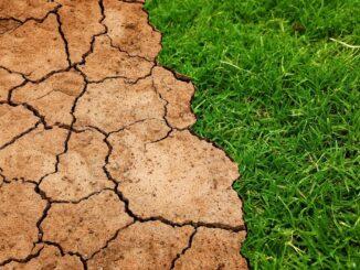 So wird man zu einem klimafreundlichen Unternehmen