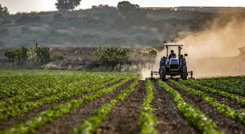 Endgültige Ergebnisse der Landwirtschaftszählung 2020: Mehr Bewässerung und mehr Zwischenfruchtanbau in Niedersachsen