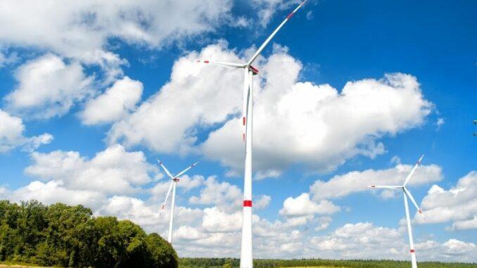 Trotz Krise: Klimaschutz ist Top-Thema für Unternehmen